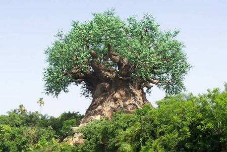 The Disney Animal Kingdom World 1996 Antichrist Tree of questionable Luciferian life which undoubtedly  represents the spirits of Lucifer/ George Washington as the Apotheosis of Universal Freemasonry/Church of Nicolaitanes (Revelation 2:6) NWO SUBLIME FAITH INITIATIVE - ANTICHRIST MOVEMENT Refer to Contemporary Freemasonry in the counterfeit Holy Land  Esau Israel http://web.mit.edu/dryfoo/www/Masonry/Reports/israel.html