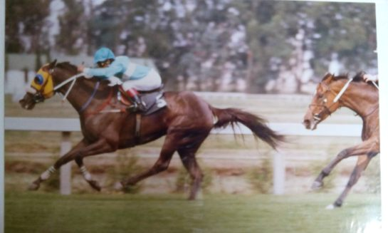 Greatest winner of my Dennis Fisher Born Again Hebrew/ Christain life time Horse Racing career which was in the 50 years of being a Horseman. The name of the Horse was Lady Lance, a filly owned by my best friend/family  Costa Saava, the jockey was W Mawaing run in Johannesburg South Africa, in 1991